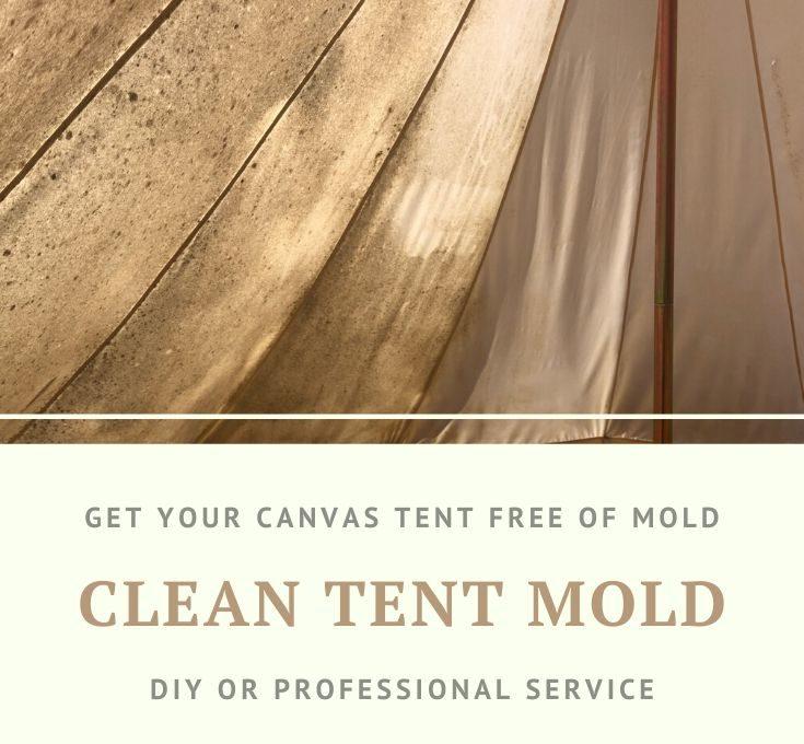 Why You Should NEVER Use Vinegar or Bleach on Canvas to Clean Mold